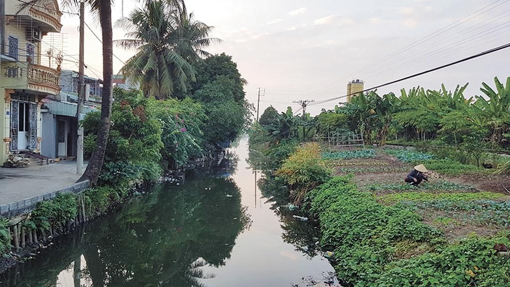 nước ô nhiễm tại hải phóng